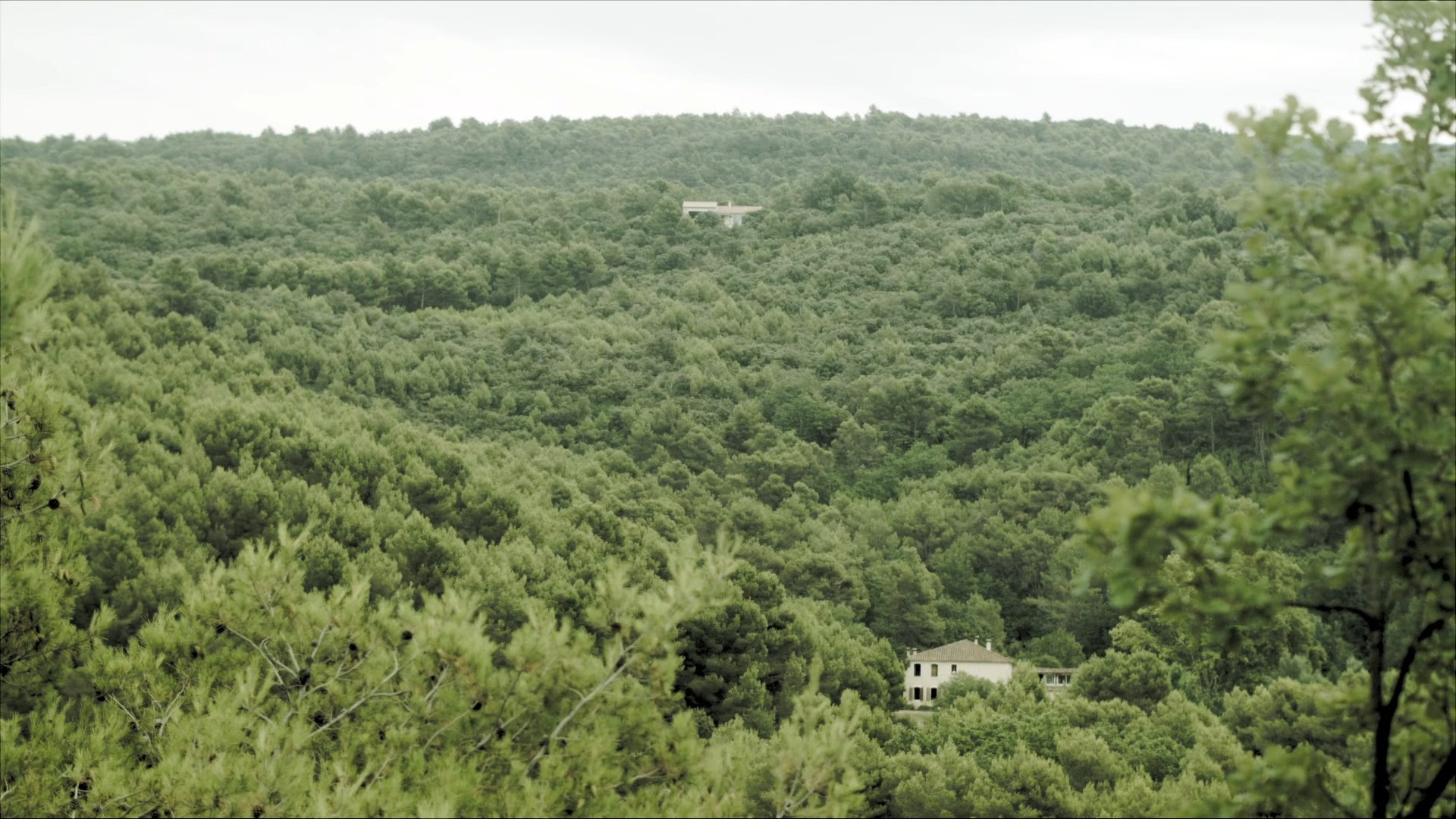 Two small houses in the distance surround by a lush green forest.