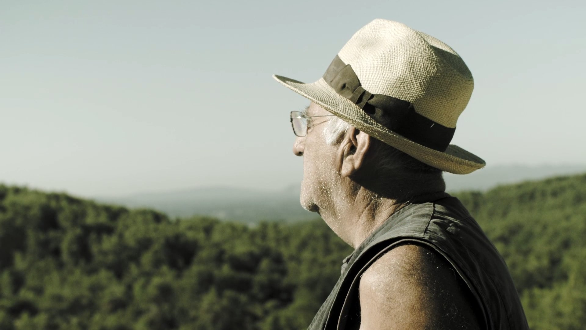 An old man wearing a straw hat looking into the distance.